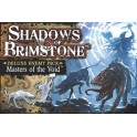 Shadows of Brimstone: Masters of the Void - deluxe enemy pack