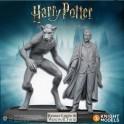 Harry Potter Miniatures Adventure Game: Remus Lupin - expansión juego de mesa