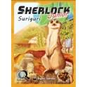 Serie Q Sherlock Junior: Suriguri - juego de cartas para niños
